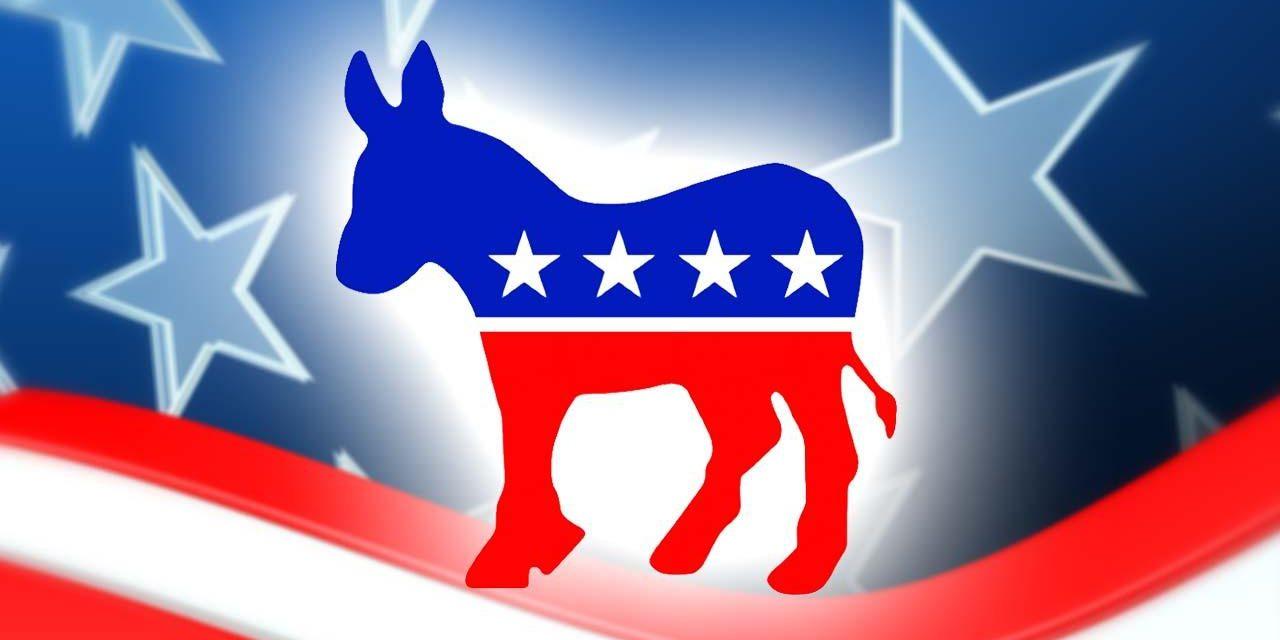 Democrats seek new identity in post-Trump era
