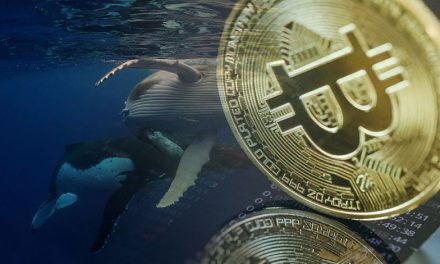 Las ballenas de #Bitcoin están comprando de forma más agresiva desde Navidad