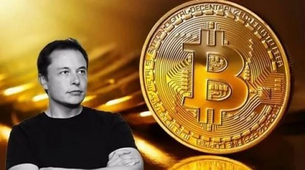 Elon Musk adds #Bitcoin to Twitter bio with 43.7M followers