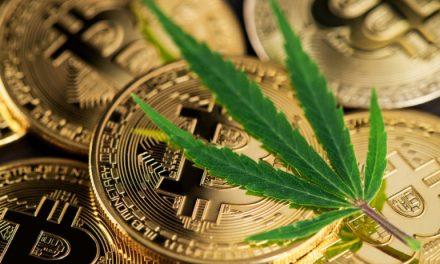Empresa alemana de cannabis adopta #Bitcoin como cobertura ante la devaluación del euro