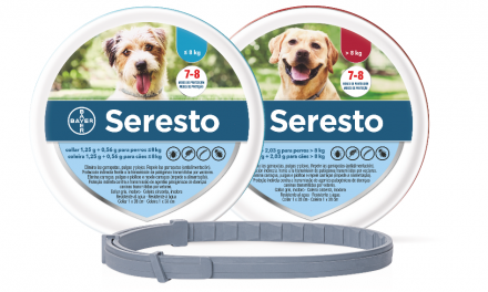 ¿Tu mascota se siente mal? retiran del mercado collar antipulgas relacionado con muerte de mil 700 mascotas