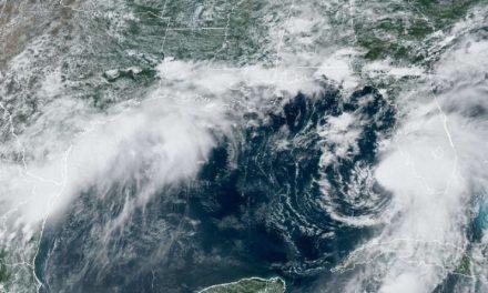 Elsa está a punto de volverse huracán otra vez y se acerca a Florida, donde hay alerta de tornados