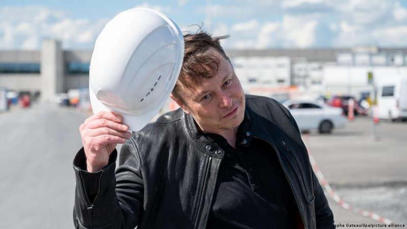 Elon Musk sugiere que un parásito cerebral es el verdadero árbitro de nuestro destino