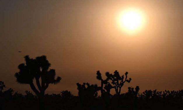 Ola de calor de tres dígitos en California durante el fin de semana
